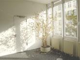 Jaké jsou výhody tepelně-izolačních oken